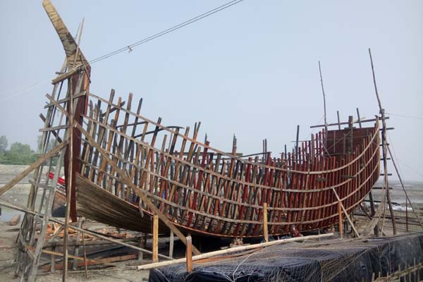 কুতুবদিয়ায় চোরাই কাঠসহ নির্মাণাধীন বোট জব্দ