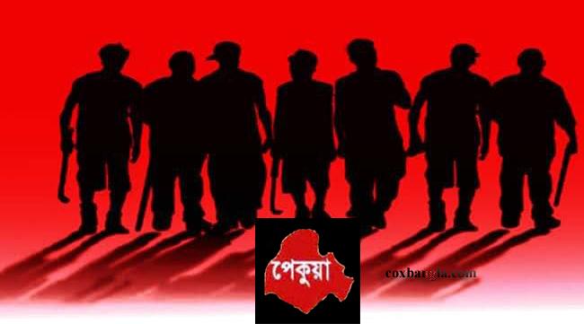 পেকুয়ার পাহাড়ে সন্ত্রাসীদের রাম রাজত্ব : থামছেনা অসহায়দের কান্না