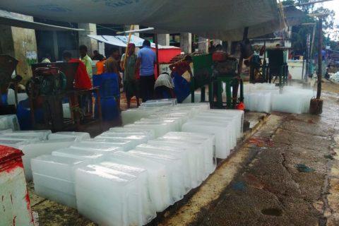 কক্সবাজারে সিন্ডিকেট করে বেশি দামে বরফ বিক্রির প্রতিবাদে মাছ বেচাকেনা বন্ধ ঘোষণা