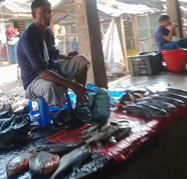 মহেশখালীতে বিক্রি হচ্ছে নিষিদ্ধ পিরানহা মাছ