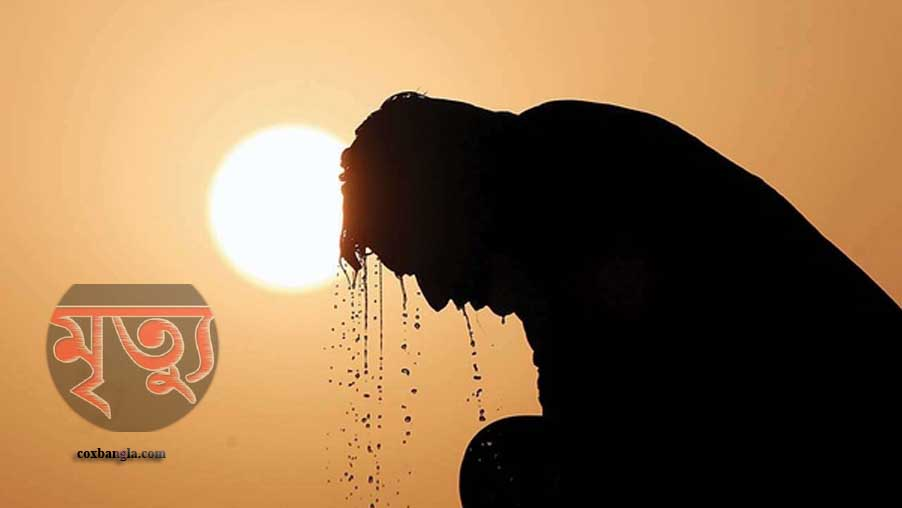 কক্সবাজারের চকরিয়ায় হিট স্ট্রোকে মৎস্যঘের মালিকের মৃত্যু