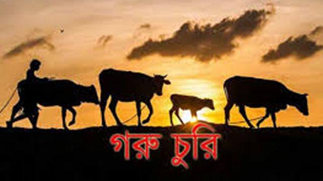 Cow-loot.jpg