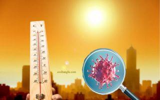 corona-virus-heat.jpg