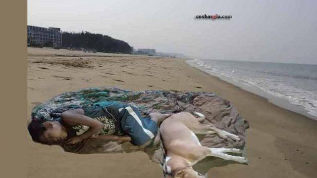cox-beach-orphan-dog-1.jpg