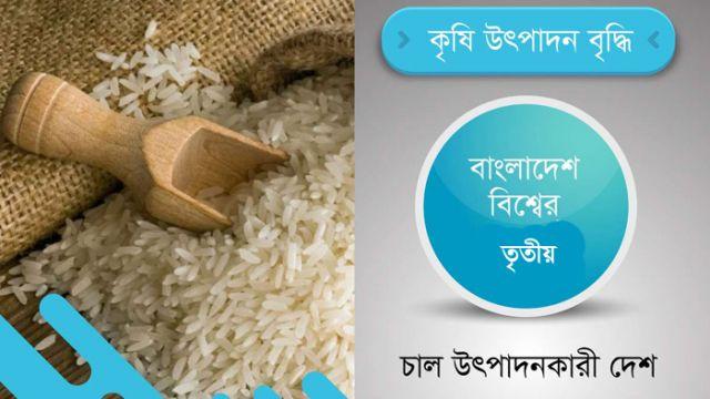 rice-bd-3rd.jpg
